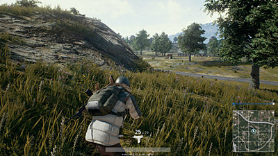 Click image for larger version.  Name:playerunknowns battlegrounds stealth.jpg Views:136 Size:289.2 KB ID:39996
