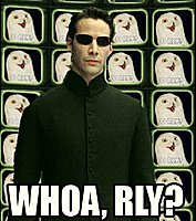 Click image for larger version.  Name:O_RLY-Matrix.jpg Views:44 Size:17.3 KB ID:490